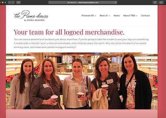 The Promo Diaries Website